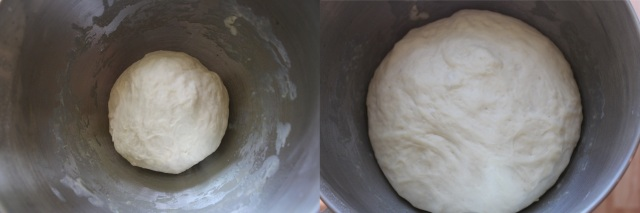 Dough Rising